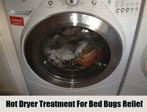 bed bugs dryer home remedies for bed bugs dryer sheets 28 images 1000