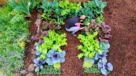 Growing Winter Vegetables Sunset Keyhole Garden Layout