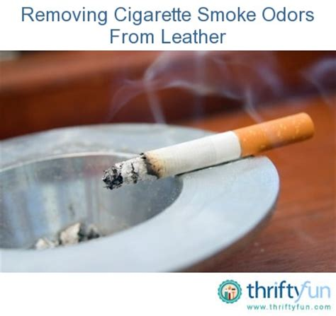 remove smoke smell from house 17 best images about oh that smells bad on pinterest stains smelly clothes and