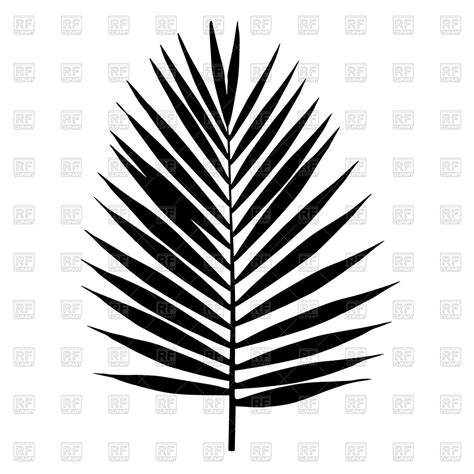 clipart vettoriali silhouette of palm leaf royalty free vector clip image