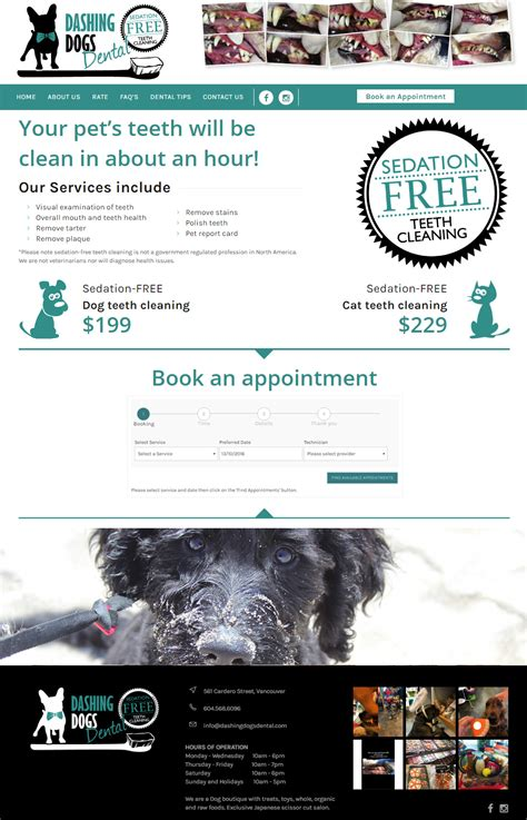 New Website For Search New Website For Teeth Cleaning Webdesign Portfolio Richli