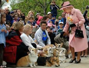 how many corgis does the queen have loveable dulux dog and the queen s corgis are named on