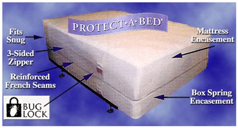 where do bed bugs hide during the day where do bed bugs hide during the day bedding sets