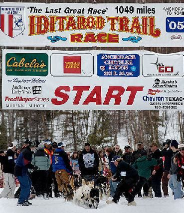 the athlete greatness grace and the unprecedented of ward books iditarod dogs hound