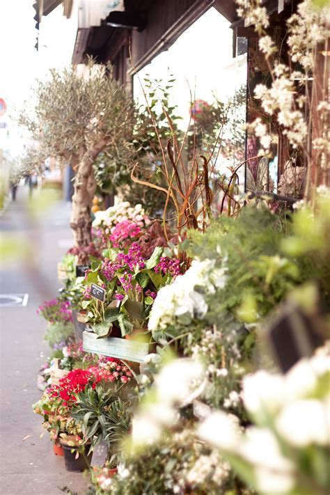 TOP 5 PARIS FLOWER SHOPS ? SPRING IN THE CITY   Lobster