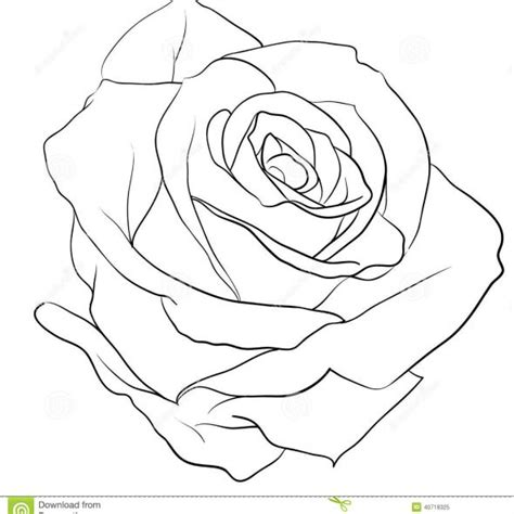 simple rose tattoo outline rose tattoo tattoo collection page 134