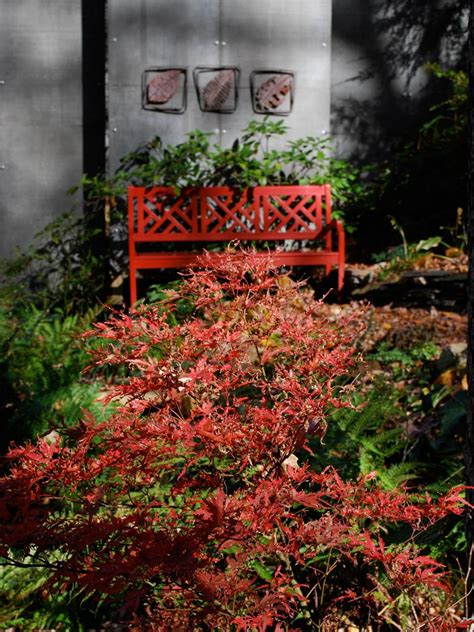 fall landscaping ideas fall landscaping tips hgtv