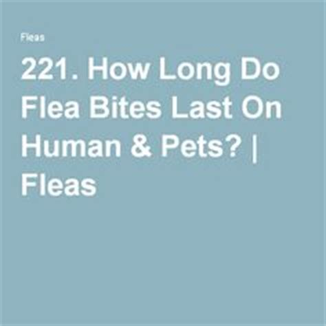how long does a bed bug bite last pinterest the world s catalog of ideas