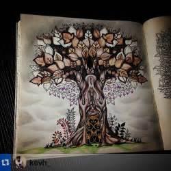 secret garden coloring book dk de 47 bedste billeder fra colouring quot johanna basford