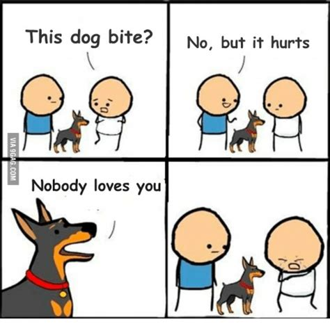 Dog Bite Meme - 25 best memes about does your dog bite meme does your