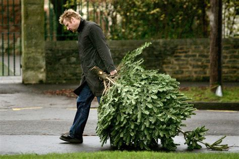 when to take down your christmas tree in the new year