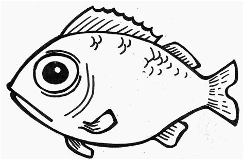 coloring pages of cod fish drawing of fish cliparts co