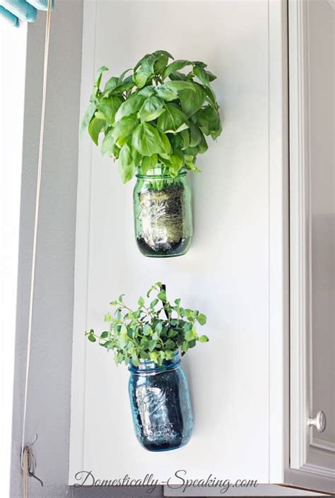 hanging window herb garden hanging herb mason jars domestically speaking
