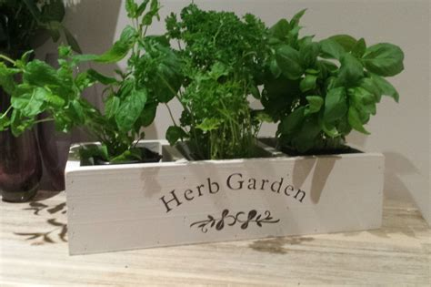 window herb planter herb planter kitchen herb planter window box planter indoor
