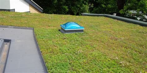what constitutes and eco green roof grufekit from ans global