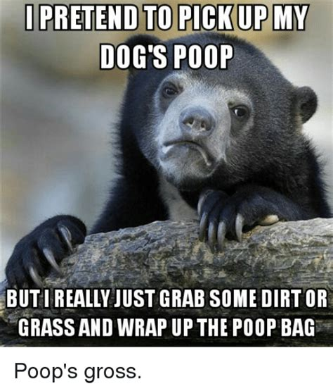 Dog Poop Meme - funny poop memes of 2017 on sizzle swagging