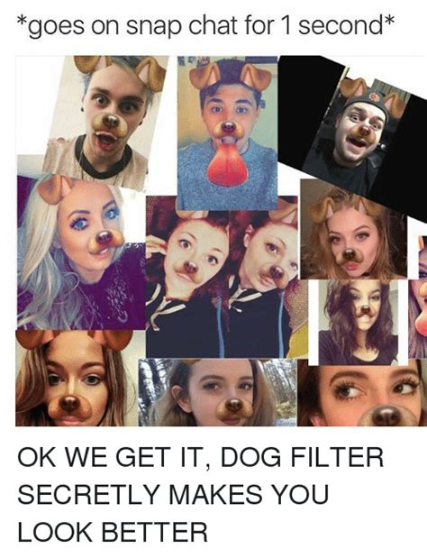 snapchat dogs dog filter   meme