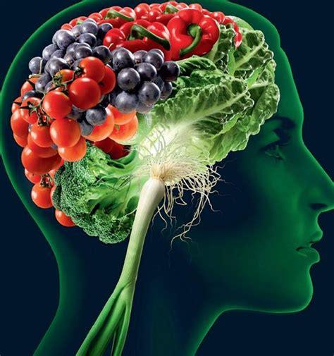 alimentazione per il cervello 200 vegetariana la migliore dieta per il cervello