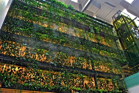 greenroofs com projects singapore changi airport
