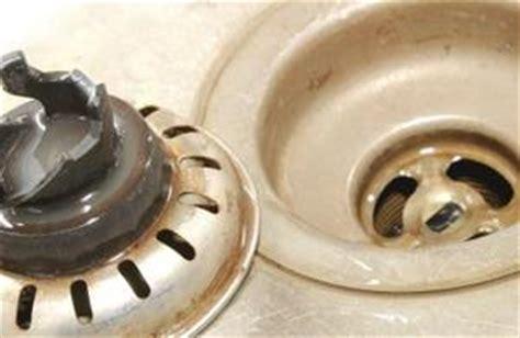 comment se d饕arrasser des moucherons dans la cuisine comment se d 233 barrasser des moucherons dans les drains