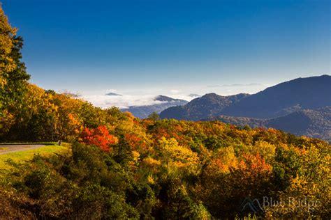 fall colors 2017 fall foliage 2017 forecast and guide blue ridge mountain