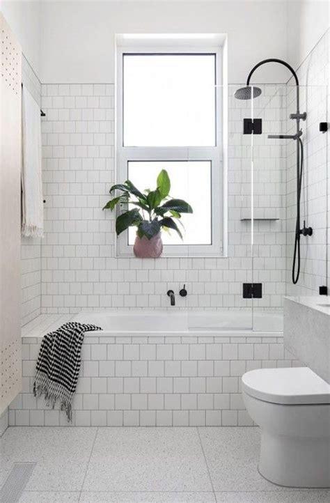 Small Nag Brilante Eds Black 10 jeitos de ter plantas no banheiro casa vogue paisagismo