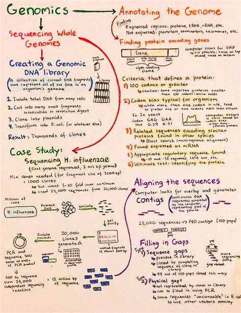 Cover Letter Erasmus Mundus by Erasmus Cover Letter