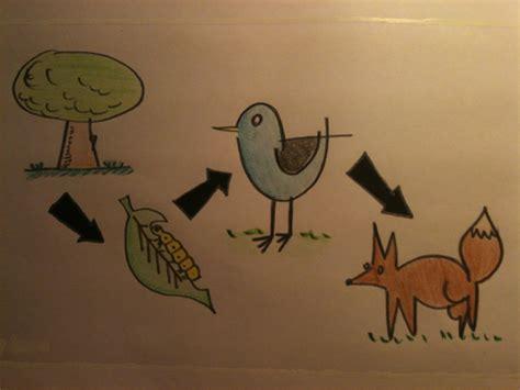 cadenas alimenticias ejemplos con dibujos dibujo de cadena alimenticia imagui