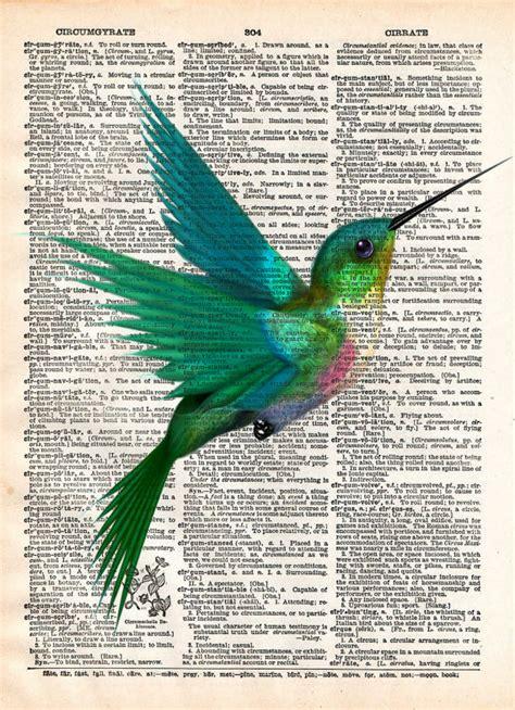 libro bird art drawing birds hummingbird art print bird art childrens art vintage
