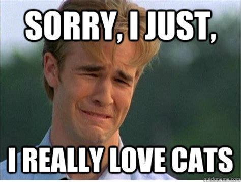 sorry i just i really love cats 1990s problems quickmeme