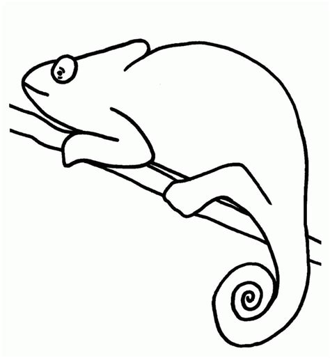 Chameleon Coloring Page Pdf | chameleon coloring pages for kids hd printable coloring