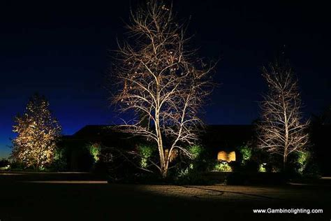 twilight solar outdoor lighting 17 best images about outdoor tree lighting on