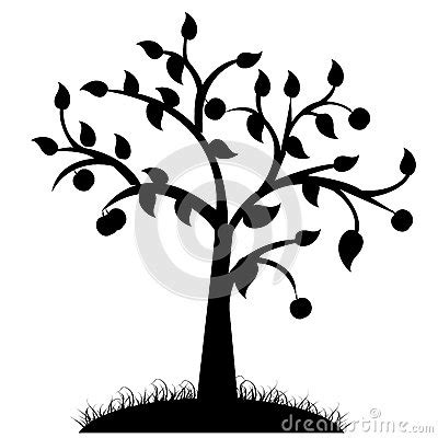 tree silhouette stock photography image