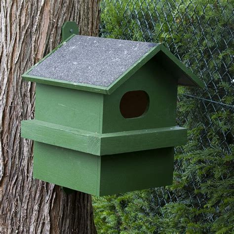 squirrel house red squirrel house nhbs