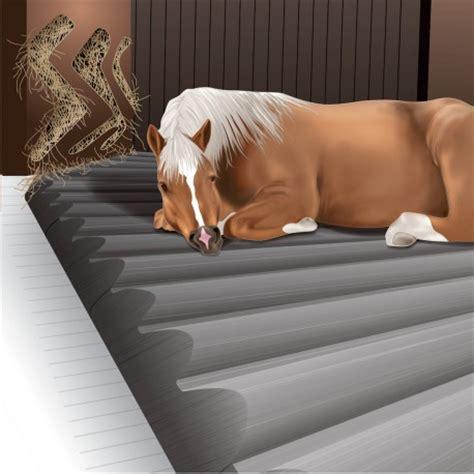 tapis de box pour chevaux tapis box chevaux par faulocam pres de bergerac