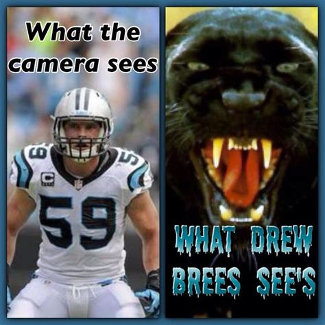 Luke Kuechly Meme - 17 best images about football on pinterest football