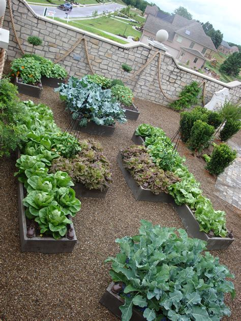Ornamental Vegetable Gardens Even Proper Gardens Have Decorative Vegetable Garden