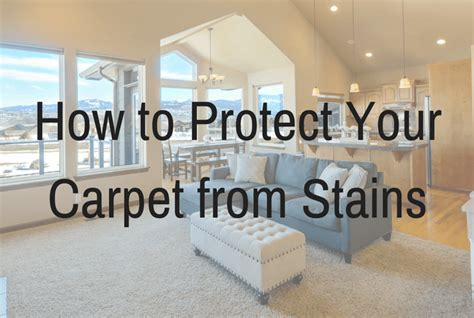 how to protect your couch from stains how to protect your carpets from stains short stop chem dry