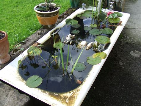 file bath tub fish pond 2834517628 jpg wikimedia commons