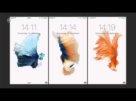 iphone   touch dynamic wallpapers gigade youtube