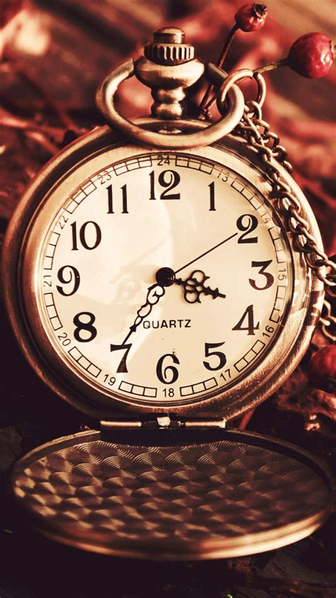 classic watch wallpaper vintage watch pocket macro autumn berries dry chain dial
