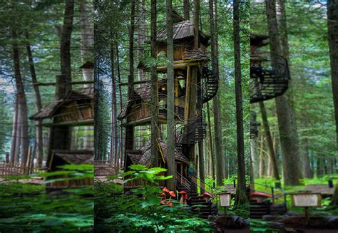 real treehouse 11 of the most magical houses in the entire world