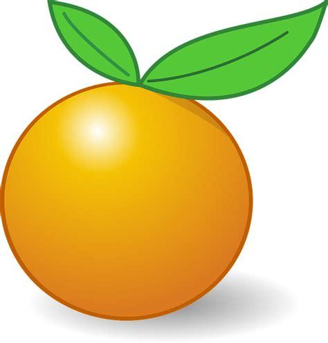 Bantal Cinta Buah Segar Gambar Jeruk orange buah daun 183 free vector graphic on pixabay