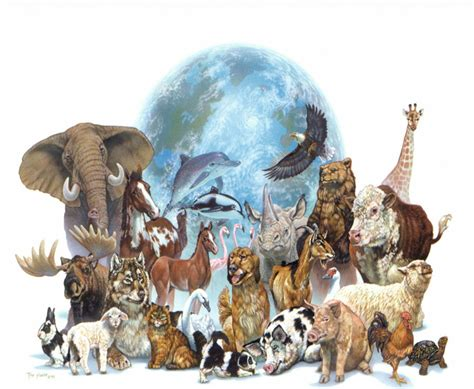 imagenes animales acuaticos y terrestres animales acu 193 ticos y terrestres