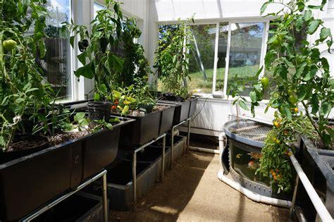 aquaponics home systems