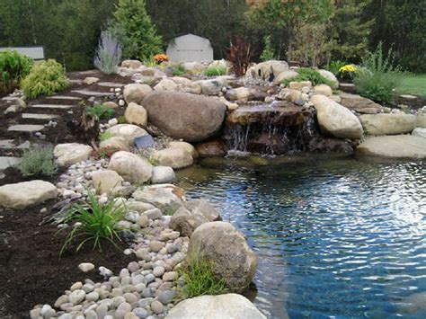 backyard water garden water garden ponds memes