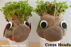 What To Take To Make Your Hair Grow by Egg Cress Heads