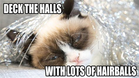 Grumpy Cat Meme Christmas - happiness is a hot pierogi grumpy cat wishes you happy