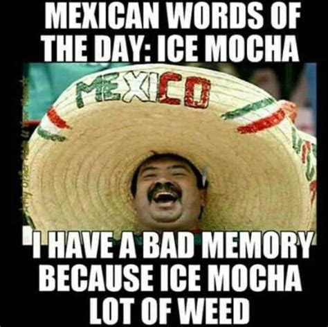Mexicans Memes - 25 best ideas about mexican funny memes on pinterest