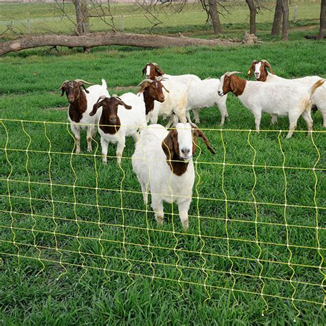 goat amp sheep net 9 42 6 premier1supplies